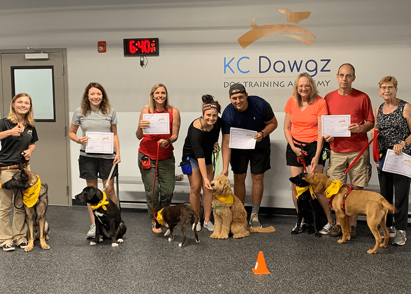 group dog training classes near Kansas City