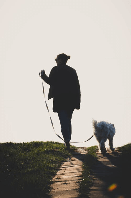 Man walking his dog with a leash